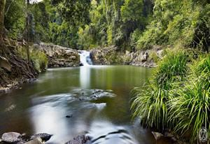 things to do in maleny